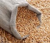 Foto в Домашние животные Корм для животных Продаём зерно,комбикорм,отруби,лизунец,сухое в Рязани 0