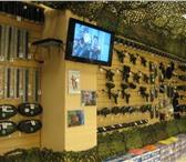 Фотография в Спорт Спортивные магазины Магазин Мир пейнтбола предлагает широкий в Санкт-Петербурге 1