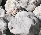 Изображение в Красота и здоровье Товары для здоровья Продаю природный пищевой мел и глину в розницу в Калуге 40