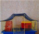 Изображение в Домашние животные Товары для животных Продам клетку для хомяков в отличном состоянии. в Братске 400
