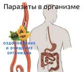 Фотография в Красота и здоровье Похудение, диеты Эффективное очищение организма от токсинов, в Москве 1800
