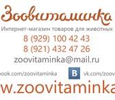 Фотография в Домашние животные Товары для животных Интернет-магазин Зоовитаминка. Предлагает в Санкт-Петербурге 100