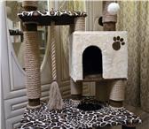 Фотография в Домашние животные Товары для животных Продается замечательный игровой комплекс в Старом Осколе 10000