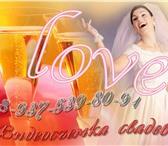Изображение в Развлечения и досуг Организация праздников Видеосъёмка фотосъёмка свадеб тамада LOVE-STORY. в Волгограде 7000