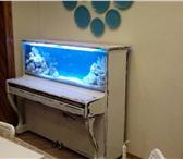 Фото в Домашние животные Услуги для животных Наша компания оказывает услуги по установке в Калуге 1600