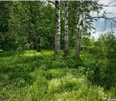 Foto в Недвижимость Коммерческая недвижимость продам 2 участка на краю леса по 10 соток в Красноярске 210000