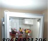 Фотография в Электроника и техника Холодильники Холодильник для цветов с холодильным агрегатом в Нижнем Новгороде 98000