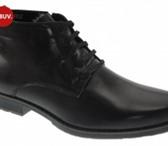 Фото в Одежда и обувь Мужская обувь Компания Maxobuv предлагает Вам посетить в Махачкале 1200