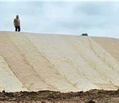 Фото в Строительство и ремонт Ландшафтный дизайн Рулонный газон Биомат производится из 100% в Москве 96