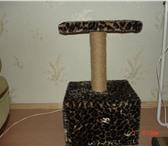 Фотография в Домашние животные Товары для животных продам кошкин дом со столиком на стойке для в Орле 1500